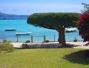 villa Cap Point-ile maurice- jardin